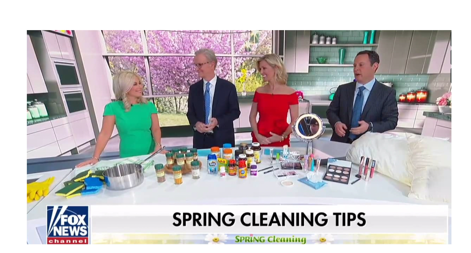 Fox and Friends Spring Clean